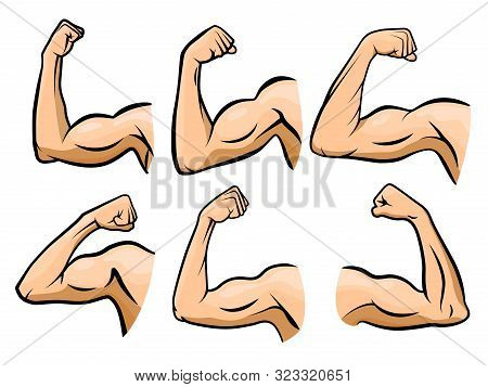 Cartoon Hand Muscle. Strong Arm, Boxer Arms Muscles And Strength Hands Hard Gym. Arm Fitness Guy Han