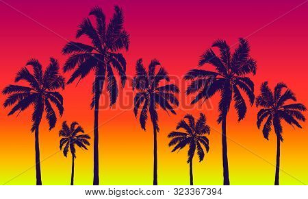 Palm Trees On A Background Of Summer Red-yellow Sunset, Vector Art Illustration.