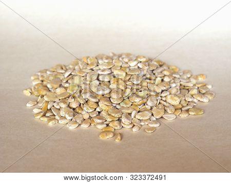 Fava Beans (vicia Faba) Legumes Vegetables