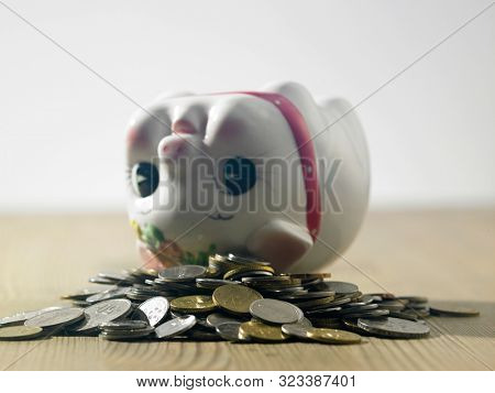 up side down cute baby piggy bank financial item