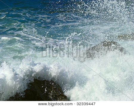 The Beauty Of The Sea.