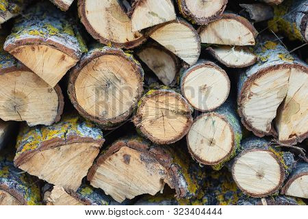 Stack of logs. Stack of firewood close up. Logs cuts prepared for fireplace. Woodpile. Wood for fireplace. Wood for winter. Firewood background . poster
