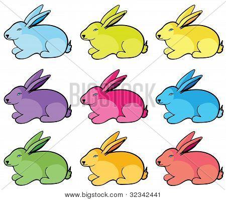 Color Rabbits.