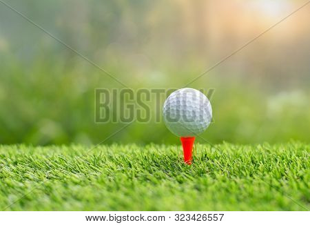 Golf Ball On Tee Ready To Be Shot.  Putting Golf Ball On Tee In Golf Course