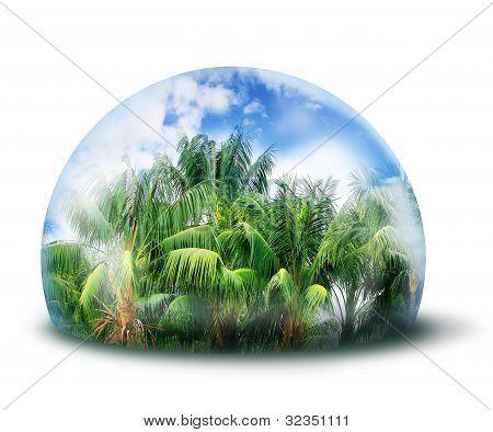 Protect Jungle Natural Environment Concept