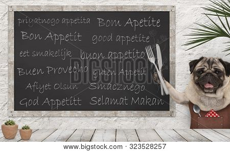 Enjoy Your Meal - Blackboard With Good Appetite In Multiple Languages With Happy Smiling Pug Puppy D