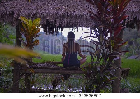 Young Woman Meditating In The Lotus Pose On A Rice Field In Bamboo Hut Bali Indonesia