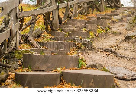 View Of The Wooden Stairs On The Mountain With Steps Made Of Stumps From Tree Trunks With Fallen Aut