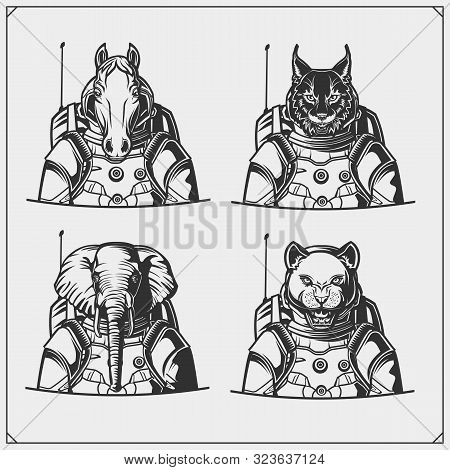 Space And Astronaut Emblems, Labels And Design Elements. Horse, Elephant, Bobcat And Puma In A Space