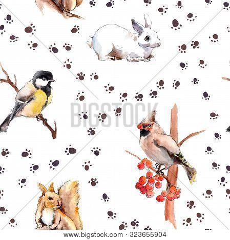 Wild Animal, Birds. Winter Pattern With Foot Print. Forest Animals: Rabbit, Squirrel, Tit Bird. Repe