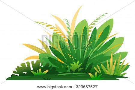 Decorative Small Composition Of Jungle Plants On Ground, Group Of Green Plants On The Sunny Lawn Iso