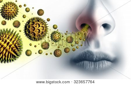 Pollen Allergies Symptoms And Seasonal Allergy Or Hay Fever Allergy And Medical Concept As A Group O