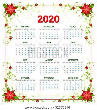 Vector Calendar 2020 Year With Flowers Of Poinsettia. Week Starts From Sunday