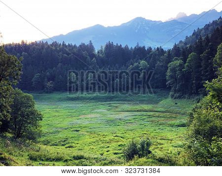 The Site Of The Unsteady And Seasonal Haslensee Lake, Nafels (näfels Or Naefels) - Canton Of Glarus,