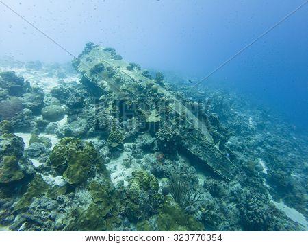 Bonaire Shipwreck