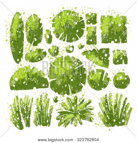 Tropical And Middle Lane Textured Leaves And Bushes Vector Set With Expressive Watercolor Splashes A