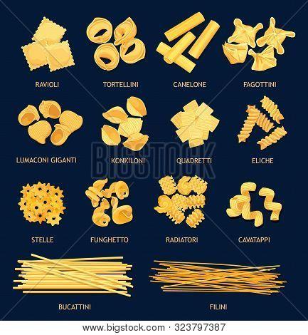 Italian Cuisine Pasta Types. Vector Ravioli And Tortellini, Canelone, Fagottini, Lumaconi Giganti An