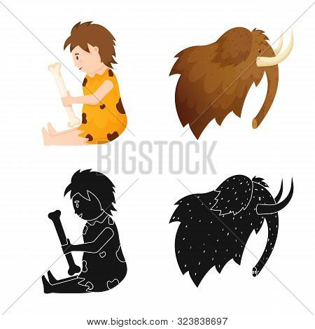 Vector Design Of Evolution And Neolithic Symbol. Collection Of Evolution And Primeval Vector Icon Fo