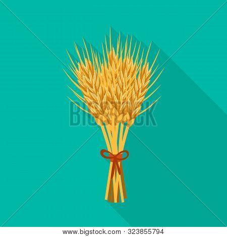Vector Illustration Of Barley And Sheaf Logo. Set Of Barley And Malt Stock Vector Illustration.