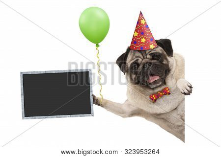 Frolic Smiling Birthday Party Pug Dog, With Balloon And Hat Decoration Holding Blank Blackboard Sign