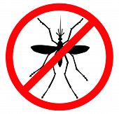 Mosquito vector silhouette. Insect reppelent emblem . poster