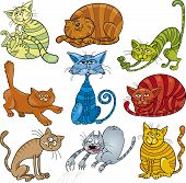 cartoon illustration of funny nine cats set poster