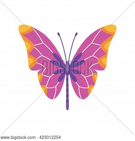 Exotic Color Butterfly. Hand Drawn Moth Wings Or Insect. Cartoon Tropical Animal. Isolated Vector Ic