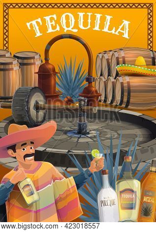 Mexican Tequila Drink Production. Cartoon Vector Man In Sombrero And Poncho, Drinking Tequila With L
