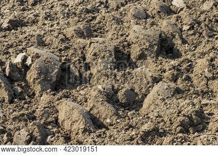 Plowed Soil In Spring Close Up, Agricultural Background.