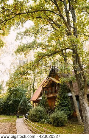 Tourist Guest House For Rest. Wooden House In Forest In Autumn Sunny Day. Wooden Boarding Path Way P