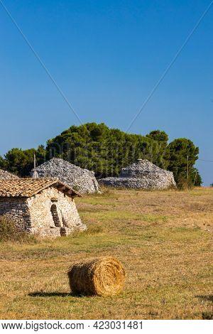 Trulli, typical houses near Castel del Monte, Apulia region, Italy