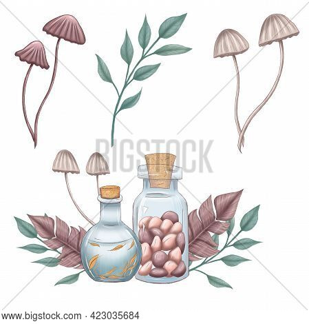 Cute Mystical Toadstools, Potions, Potion Making Illustration, Halloween, Magical Party Design Eleme