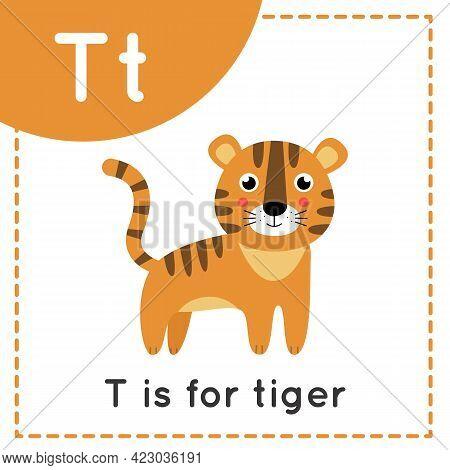 Animal Alphabet Flashcard For Children. Learning Letter T. T Is For Tiger.