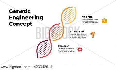 Dna Infographic. Scientific Medical Concept. Genetic Engineering. 3 Steps Diagram. Vector Illustrati