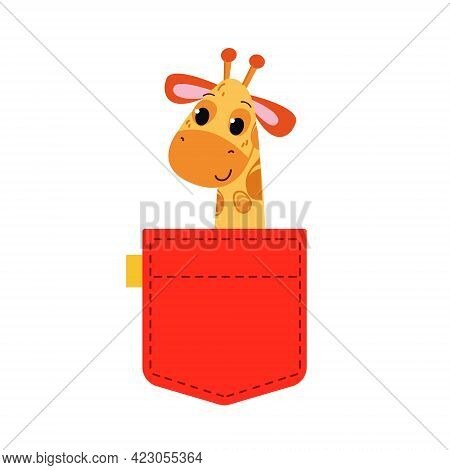 A Giraffe Is Sitting In A Red Pocket. A Cute Gimraph Peeks Out Of His Pocket. Vector Illustration In