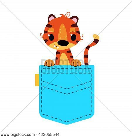 A Cute Tiger Cub Sits In A Blue Pocket. A Striped Baby Tiger Peeps Out Of His Pocket. Vector Illustr