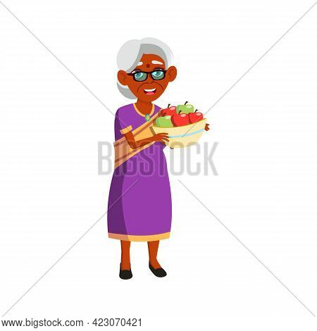 Grandmother Harvesting Apples In Garden Cartoon Vector. Grandmother Harvesting Apples In Garden Char