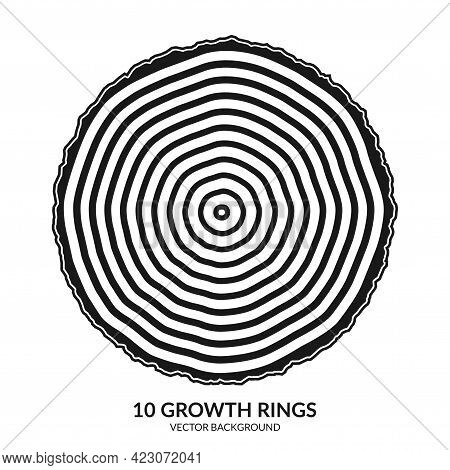 10 Growth Rings. Tree Rings And Saw Cut Tree Trunk. Can Be Used As 10th Anniversary Concept. Vector
