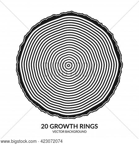 20 Growth Rings. Tree Rings And Saw Cut Tree Trunk. Can Be Used As 20th Anniversary Concept. Vector