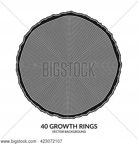 40 Growth Rings. Tree Rings And Saw Cut Tree Trunk. Can Be Used As 40th Anniversary Concept. Vector