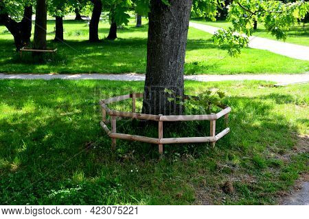 When Maintaining Greenery, It Is Necessary To Protect Trees And Flower Beds Against Entry. Trees Are