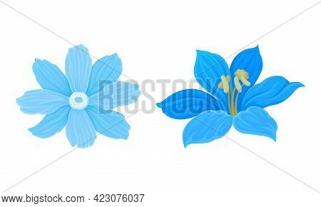Blue Flowers With Lush Petals And Stem Vector Set