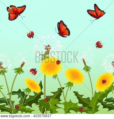 Vector Pattern With Dandelions And Insects.dandelions, Butterflies And Ladybugs On A Colored Backgro
