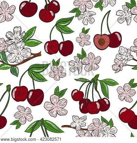 Seamless Pattern With Cherries And Flowers, Vector. Blooming Cherry Tree And Ripe Berries. Delicate