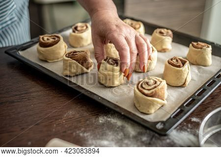 Womens Hands Are Gently Putting The Raw Cinnamon Buns On A Baking Sheet Before Baking. Concept Of Th