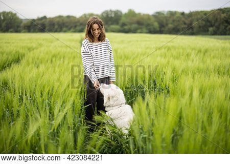 Funny Big White Sheepdog Jumping On Green Rye Field And Playing With Female Owner.