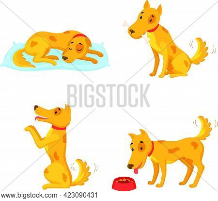 Dog In Different States. Cartoon Character Set. Sleeping, Gnawing Bone, Performing, Eating. Vector I
