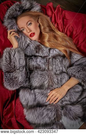 Attractive blonde girl in an expensive silver fox fur coat lying on a velvet sofa. Fur coat fashion. Luxury lifestyle.