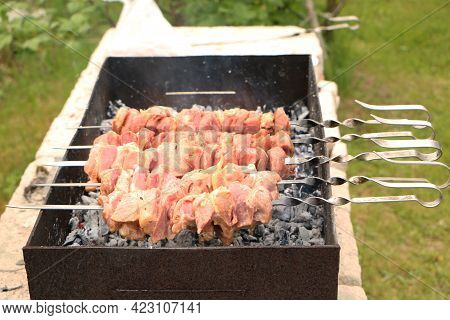 Meat Kebab On The Grill On A Green Background. Summer Vacation And Traditional Outdoor Bbq Picnic. G