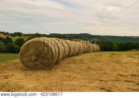 Closeup Of Some Hay Bales Lying On A Tuscan Hill.
